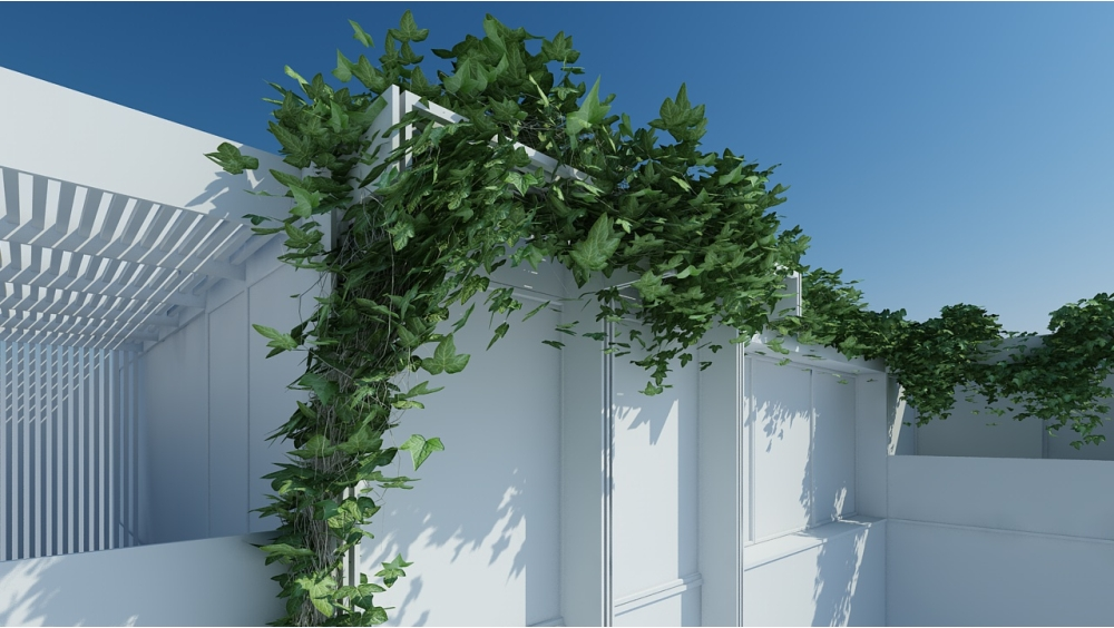 Tutorial Cinema4d Ivygrower Come Rappresentare Una Pianta
